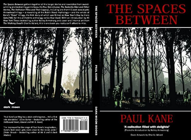 The Spaces Between, by Paul Kane